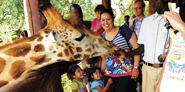 giraffe_centre_excursion