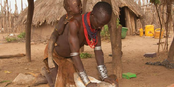 wildlife_and_tribal_culture