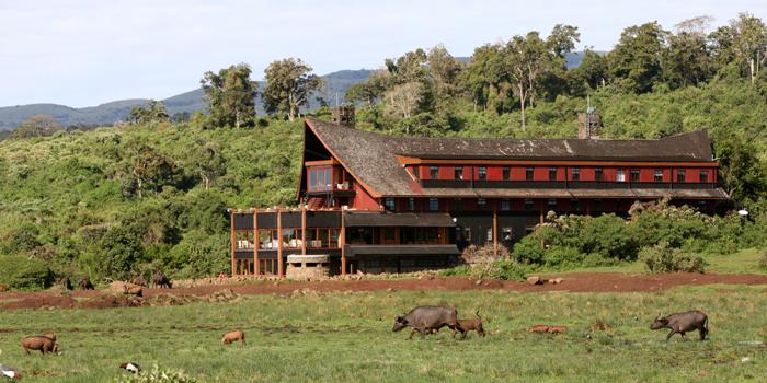Ark Lodge