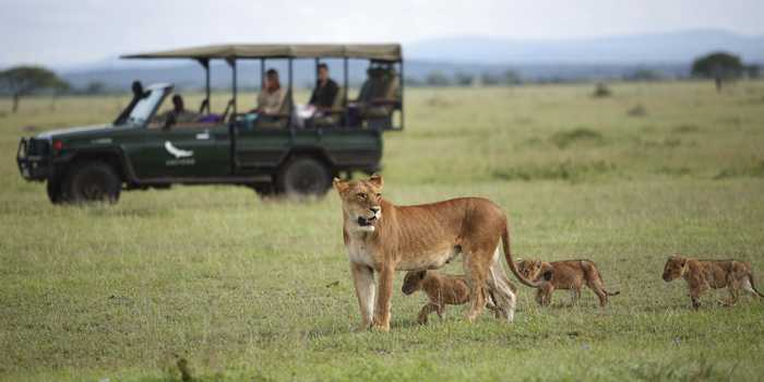 tanzania_royal_safari