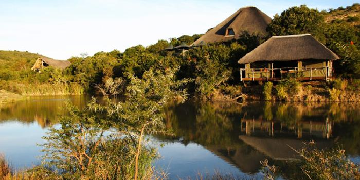 Bayethe Tented Lodge - Shamwari
