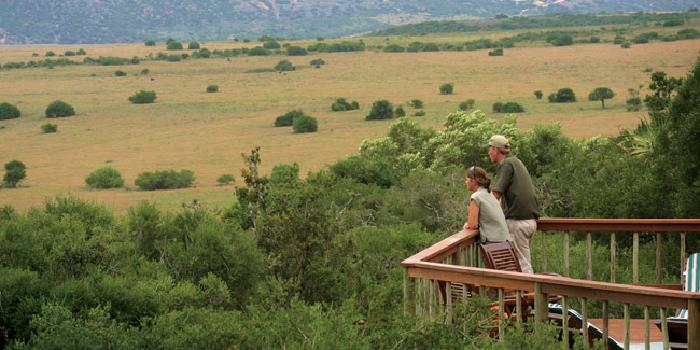 Woodbury Lodge - Amakhala
