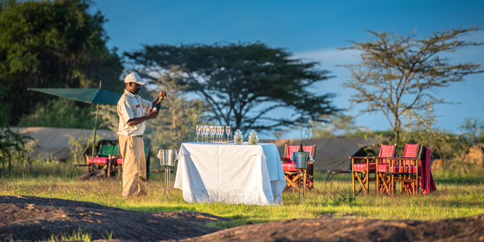Sundowners in the Serengeti