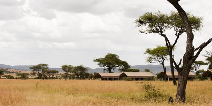 Serengeti Kati Kati (medium) Camp