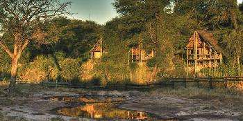 savute_safari_lodge