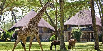 lake-naivasha-sopa-lodge