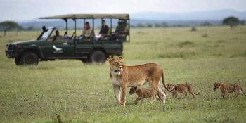 Tanzania Royal Safari