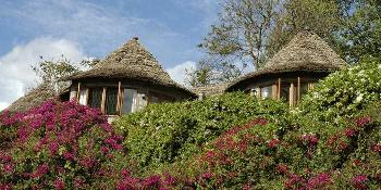 arusha-serena-hotel,-resort-and-spa