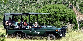 sibuya_game_reserve_&_lodge