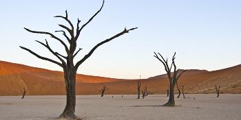 namibian-discovery-14-days