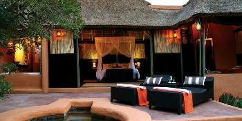 safari-lodge-amakhala