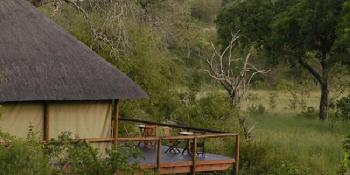 camp shonga - shishangeni private lodge image 2