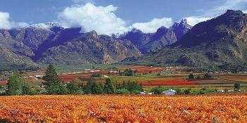 best_of_the_western_cape