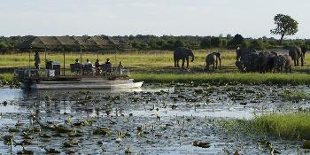 best_of_chobe