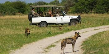 chobe_tour_with_game_drive_(full_day)
