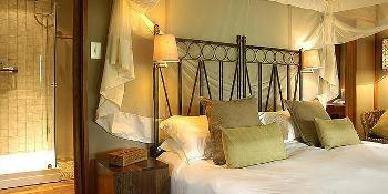zululand_tree_lodge