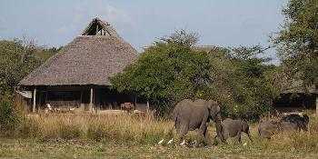 siwandu-safari-camp