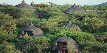 serengeti_serena_safari_lodge