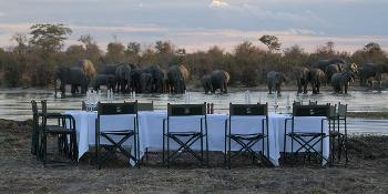 elephant's_eye,_hwange