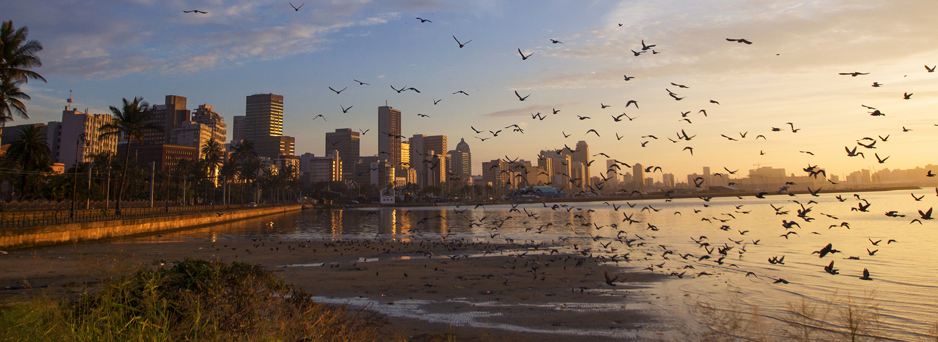 Durban At Sunrise