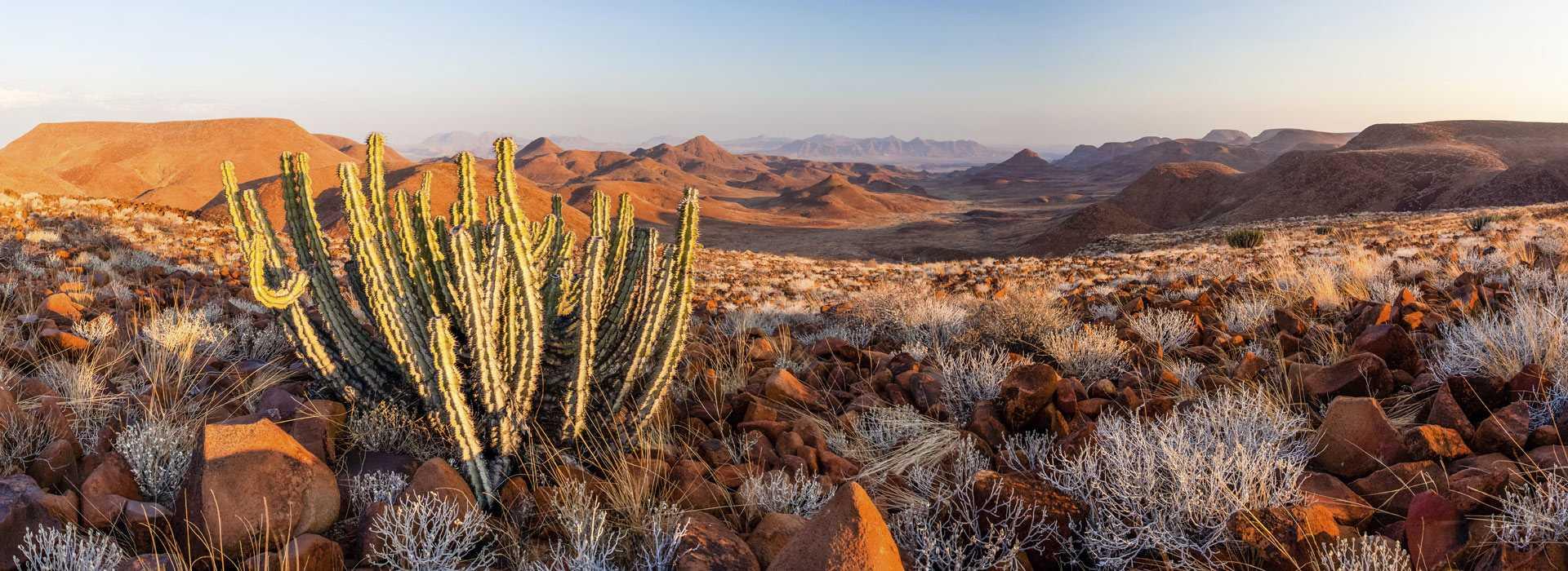 Otjiwarongo Namibia  city photo : Stunning Landscape In Otjiwarongo Namibia