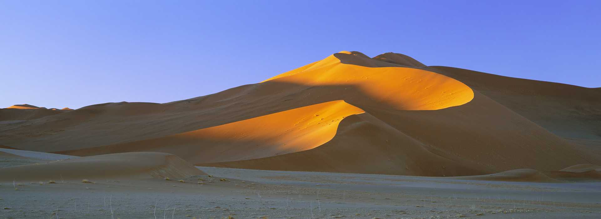 Morning Sun Catches The Sand Dunes, Namibia