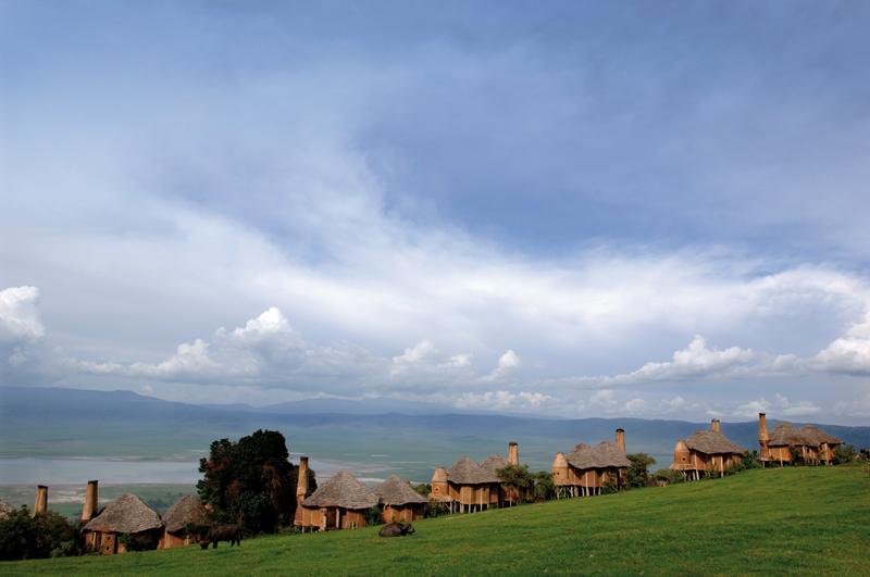Ngorongoro, Tanzania, Africa