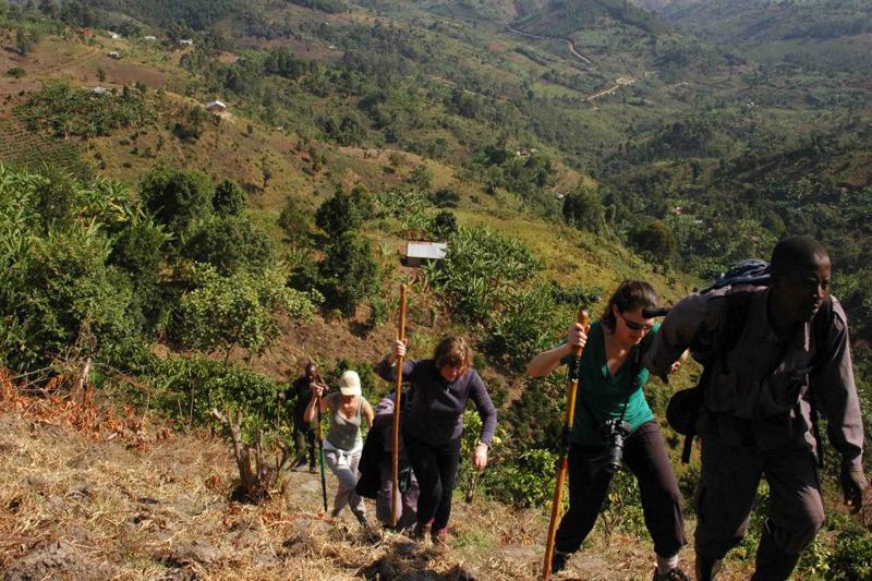 Group of people on a Gorilla Trek in Uganda