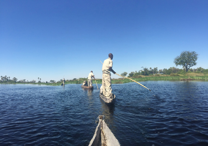 Mokoros on the Okavango Delta, Botswana