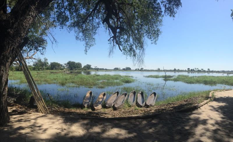 Pom Pom Camp, Botswana