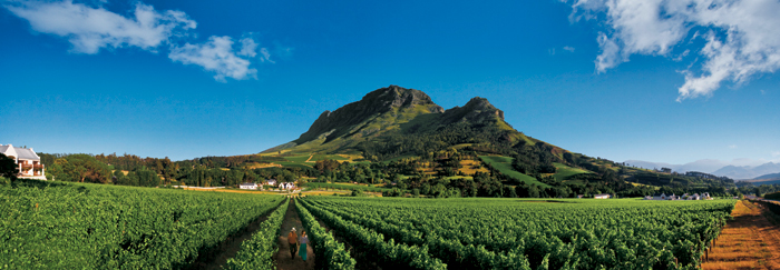 The Winelands in South Africa