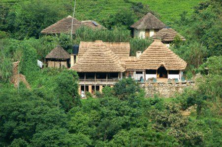 Bwindi Lodge, Uganda
