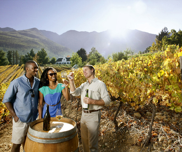 Wine tasting, South Africa