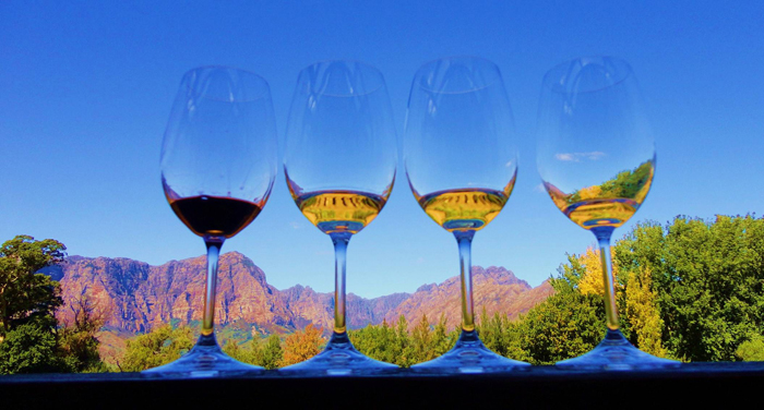 4 glasses of wine with the Winelands in the background