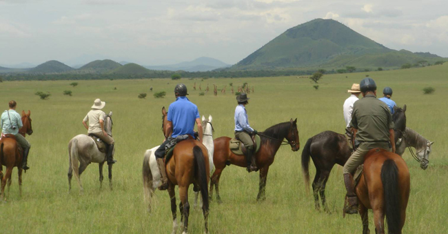 Horseriding over the Kenyan plains