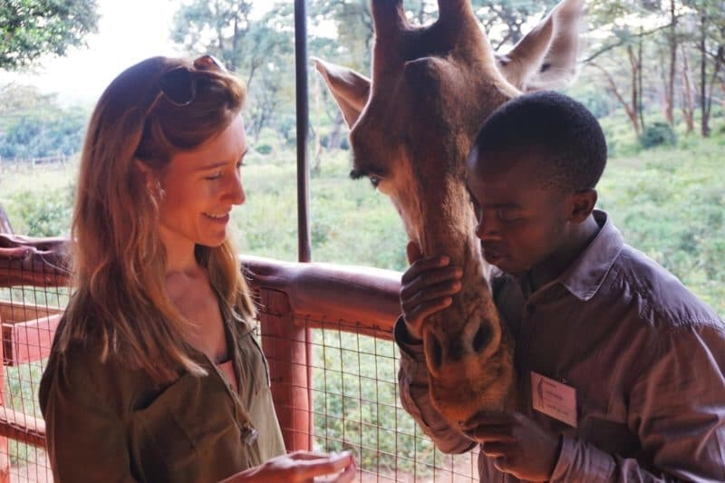 Hand feeding giraffe at Giraffe Centre, Kenya