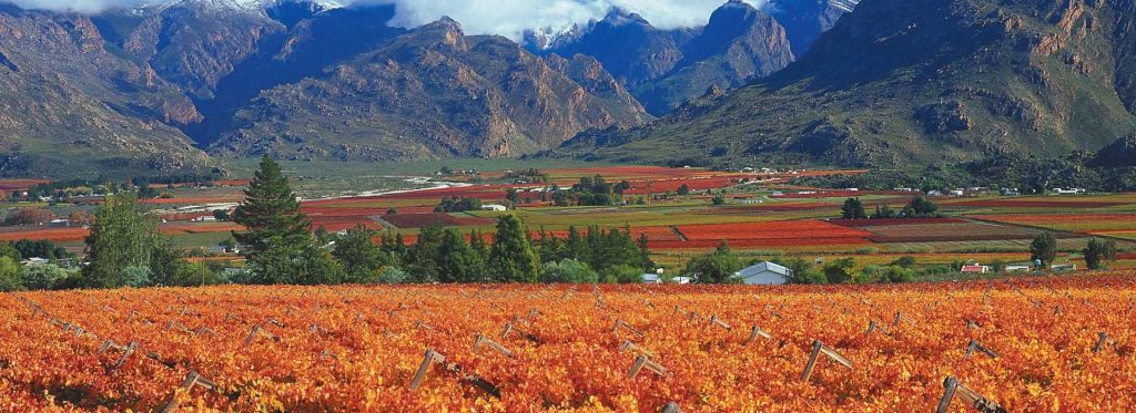 The stunning Cape Winelands, South Africa