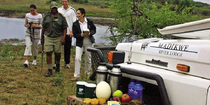 Madikwe National Reserve, South Africa Safari
