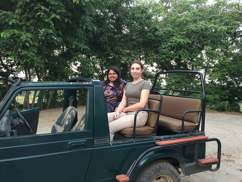 Safari in Ranthambhore on holiday in India