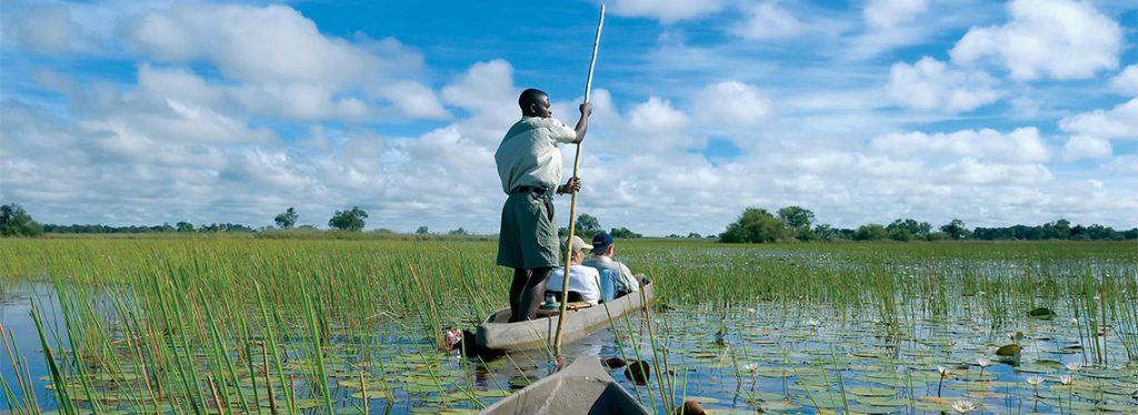 Lush and green Botswana