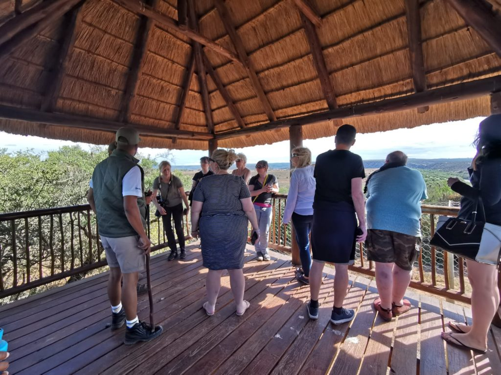 A viewing platforms at The Shamwari Big Cat Sanctuary