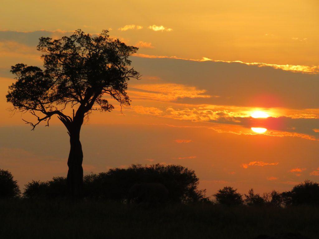 Beautiful African Sunset over the Masai Mara